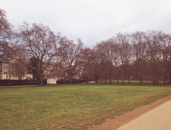 Palácio de Buckingham- green park 2_r1_c1