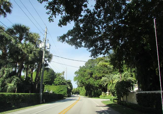 Miami 12